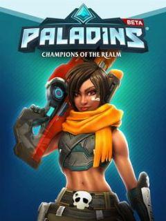 Cover Paladins