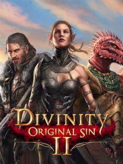 Cover Divinity: Original Sin II