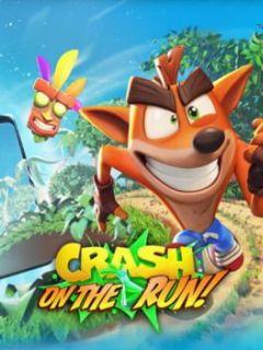 Cover Crash Bandicoot: On the Run!