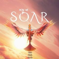 Cover How We Soar