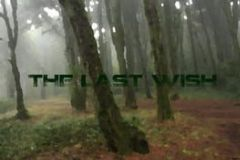 Cover The Last Wish