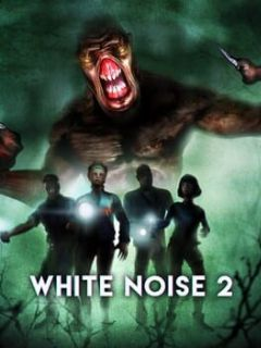 Cover White Noise 2