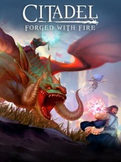 Cover Citadel: Forged With Fire