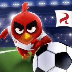 Cover Angry Birds Goal!