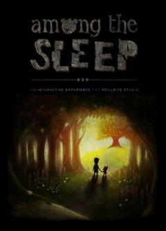Cover Among the Sleep